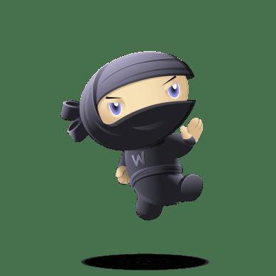 ninja-kick