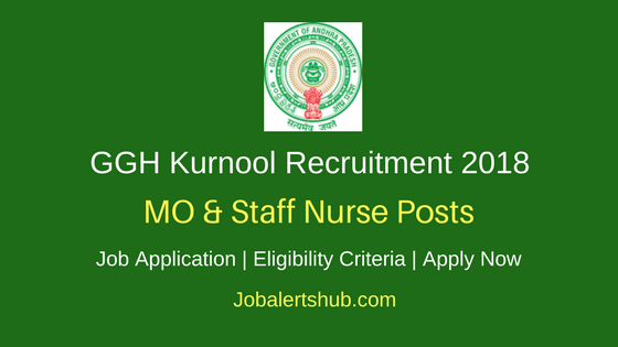 GGH Kurnool 2018 MO & Staff Nurse, Data Manager Posts – 05 Vacancies | Degree, GNM, MBBS | Apply Now