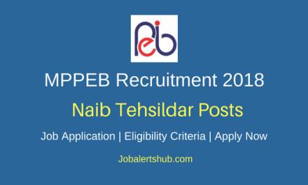 Madhya Pradesh Professional Examination Board (MPPEB) 2018 Recruitment Naib Tehsildar Posts – 169 Vacancies   12th   Apply Now