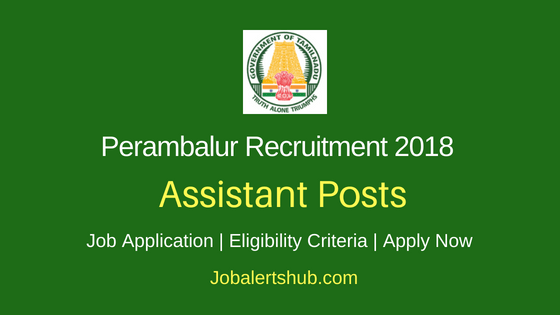 District Child Protection Unit (DCPU Perambalur) 2018 Assistant cum Data Entry Operator Posts – 04 Vacancies | 10th Class/ SSLC, DCA | Apply Now