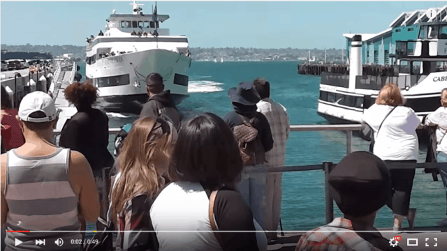 Whale watching boat crashes into dock!