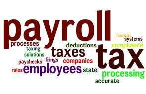 senior payroll tax specialist job description duties tasks and responsibilities