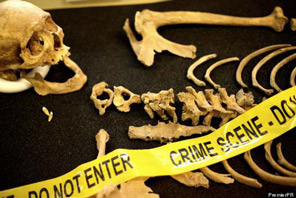 forensic anthropologist job description example job description