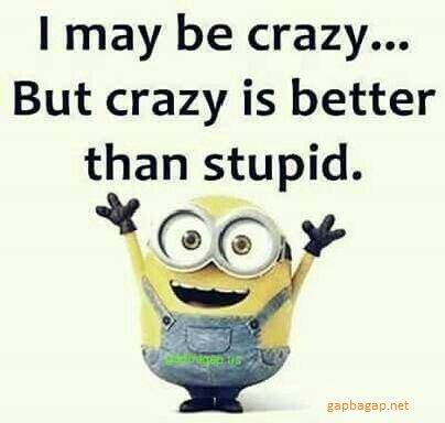 Work Quote Funny Minion Quotes About Crazy Vs Stupid