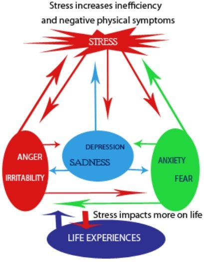 Stress Management Stress Diagram Of Stress See How Anxiety Anger