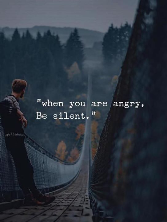 Work Quotes About Anger And Silence Https