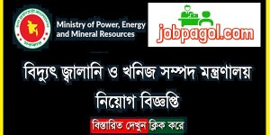 Ministry of Power Energy and Mineral Resources Job Circular