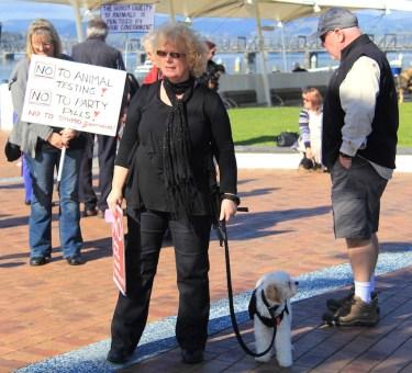 Tauranga Animal Testing Protest 30.7.2013 (17)