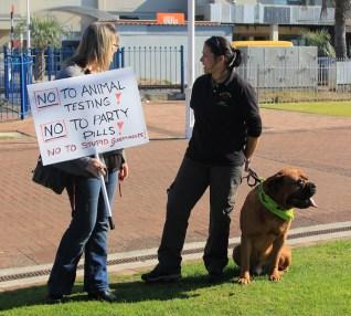 Tauranga Animal Testing Protest 30.7.2013 (18)
