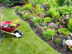 Cleaners and Gardeners