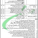 Punjab Institute of Quran and Seerat Studies Lahore Jobs