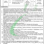 Punjab Overseas Pakistanis Commission Jobs