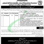 Ministry of National Health Services & Regulations Jobs
