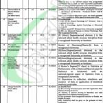 DHQ Hospital Faisalabad Jobs