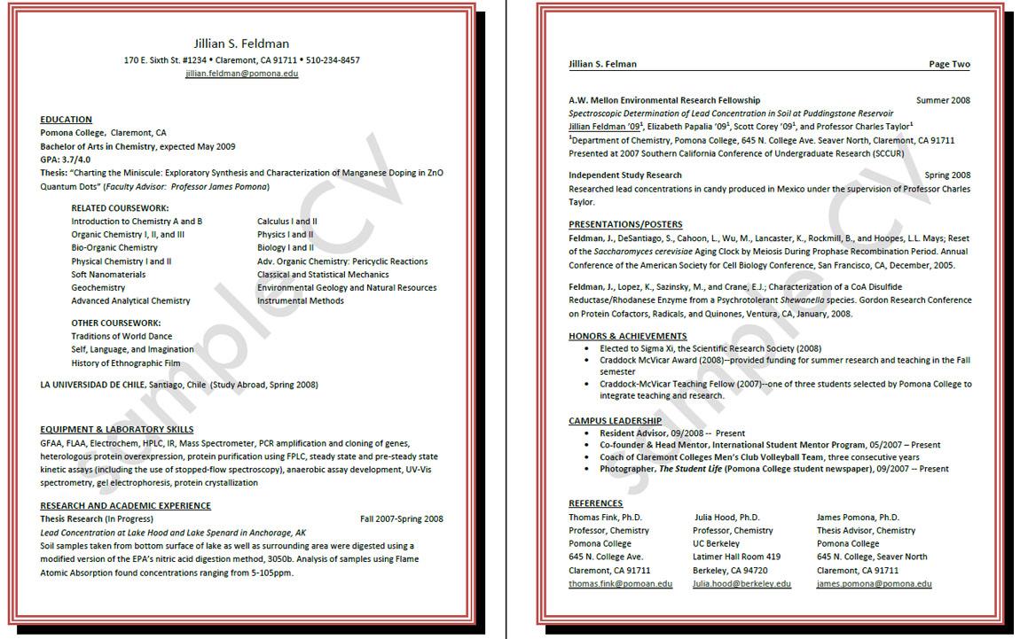 curriculum vitae curriculum vita - Vita Curriculum