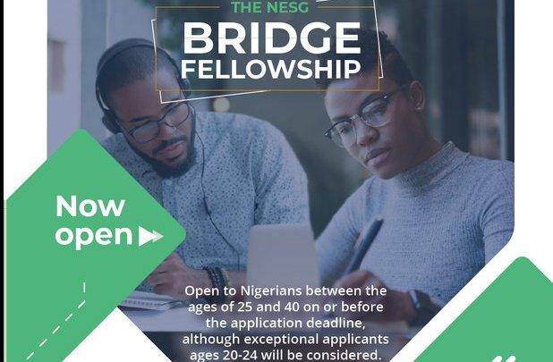 nesg bridge fellowship 2019 jobsandschools