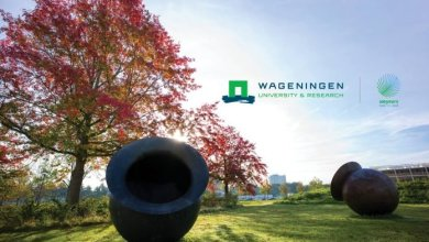 Photo of Wageningen University & Research 2020 Africa Scholarship Programme (ASP) for African Students