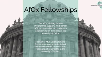 Photo of Africa Oxford Initiative (AfOx) Visiting Fellows Program 2020 for African-based Researchers & Academics
