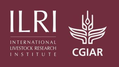 Photo of International Livestock Research Institute (ILRI) Graduate Fellowship 2020