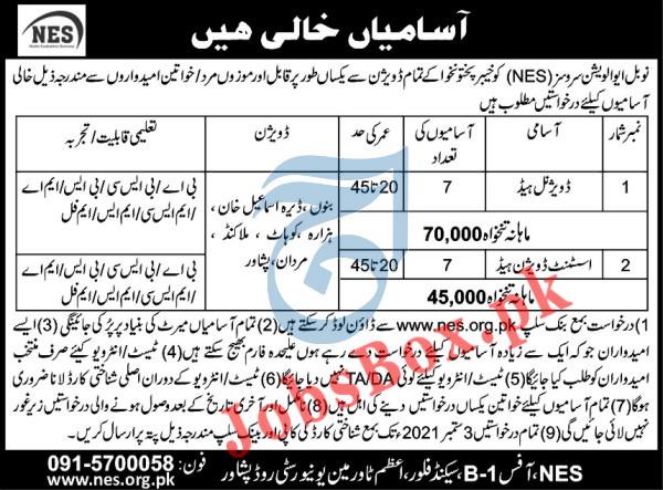 Noble Evaluation Services NES Jobs 2021 - Application Form via nes.org.pk
