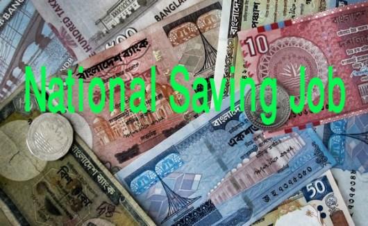 National Saving Department Job Circular