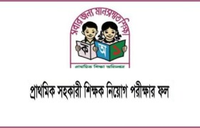 Govt Primary School Teacher Result 2019