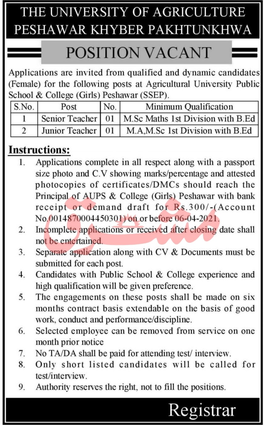 The University of Agriculture Peshawar AUP Jobs 2021