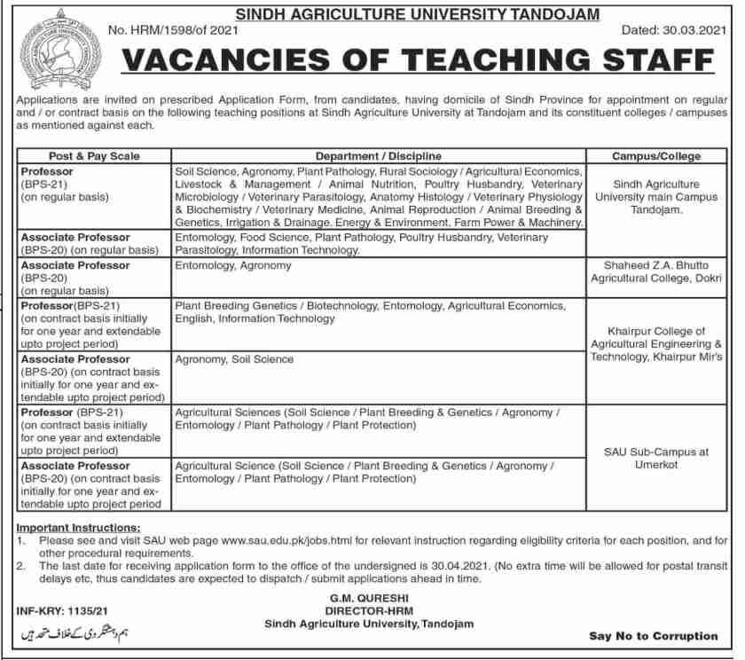 Sindh Agriculture University Tandojam Jobs 2021