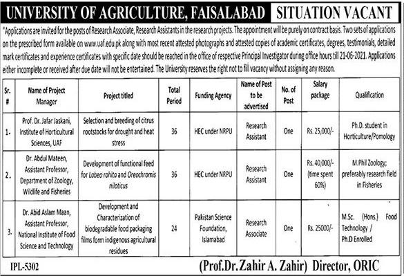 University of Agriculture Faisalabad UAF Jobs 2021