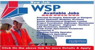 new job careers @ WSP