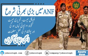 anf jobs