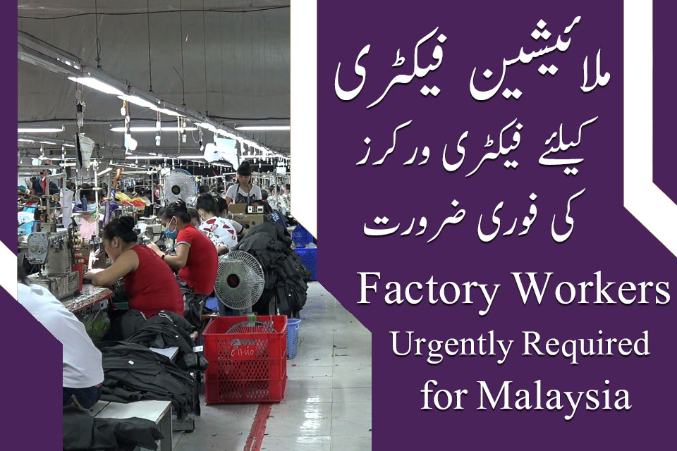 Malaysian manufacturing factory workers jobs