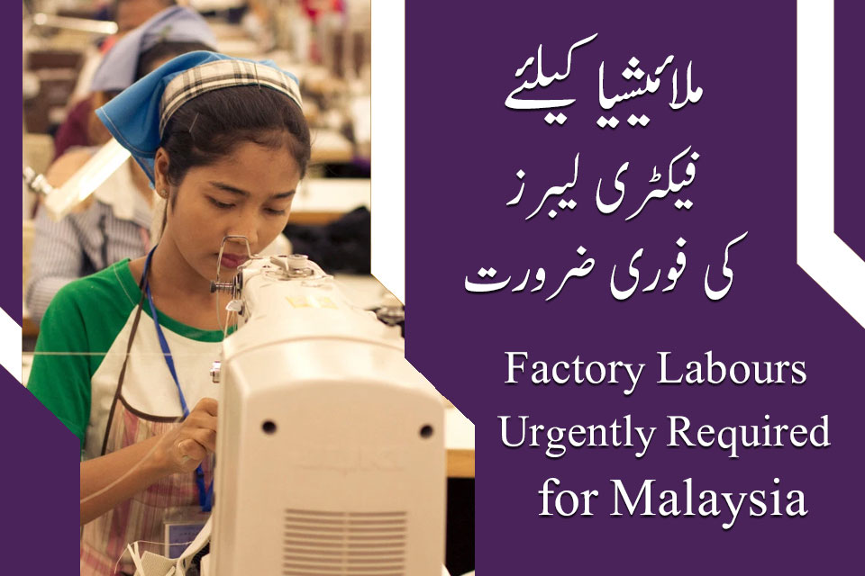 Malaysia Factory labour jobs