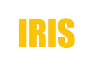 iris python developer