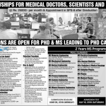 PAEC Fellowships 2016 MS Programs PIEAS