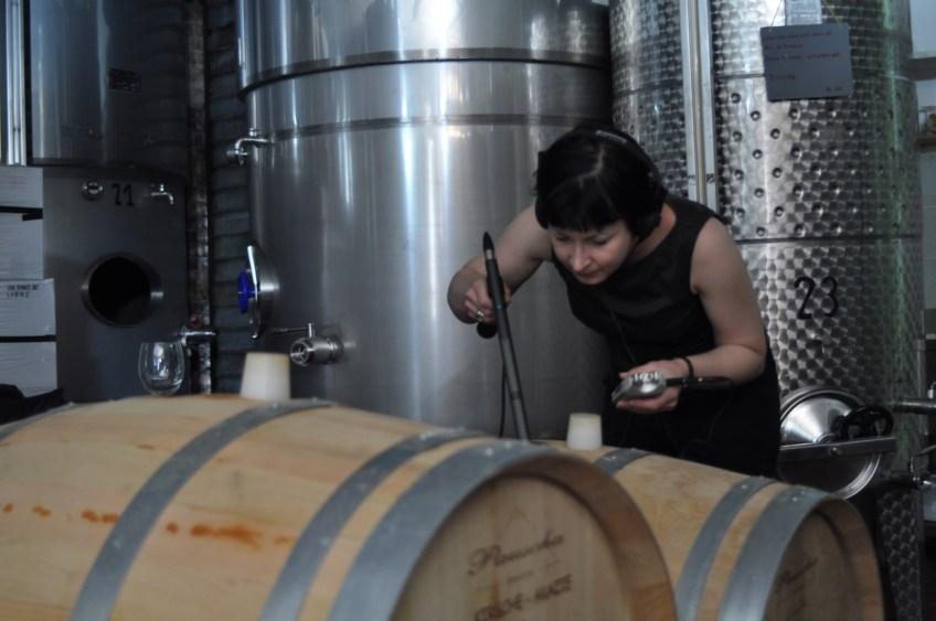 Recording a fermentation