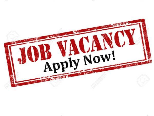 ajira Leo 2021, ajira porto, http ajira tamisemi go tz, ajira.tamisemi.go.tz article has important jobs links to apply various job vacancies in Tanzania.