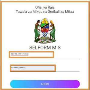 How to use Tamisemi Selform 2021? - selform form four 2021