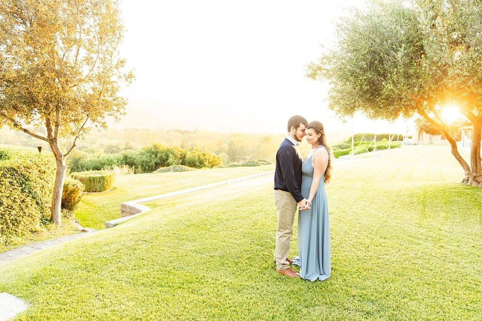 The couple surrounded by trees while standing on the grass. They are holding hands down low and the sun is peeking through the trees.