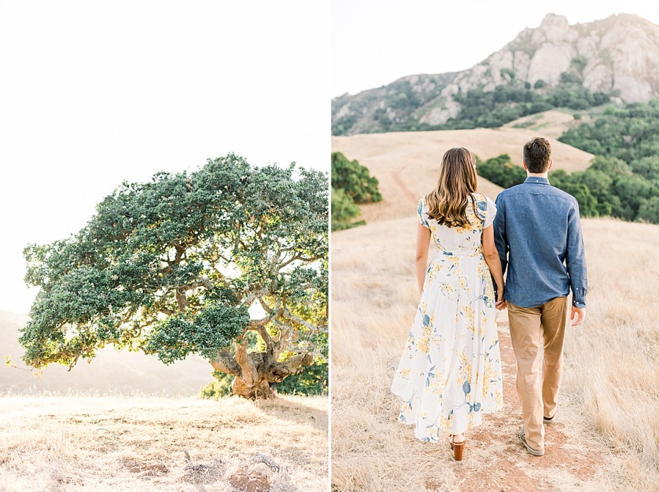 An oak tree with sunlight coming through the branches during golden hour in SLO, California. A second image of the couple walking away from the camera while holding hands.