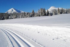 Cross-Country-Skiing at Passo Oclini