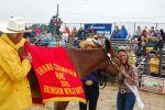 Benson Mule Days 1