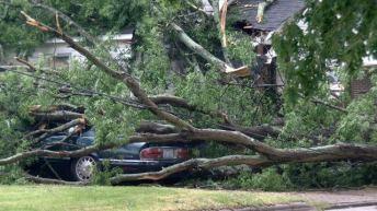 Storm Damage 4-29 3
