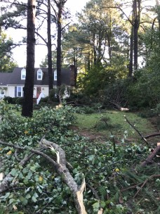 Storm Damage 08-10-18-8DB