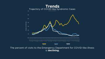 COVID Graphics 09-02-20-3C