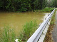 Flooding on Black Creek near Four Oaks