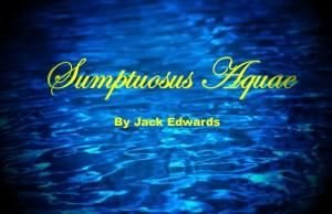 Sumptuosus Aquae Perfume