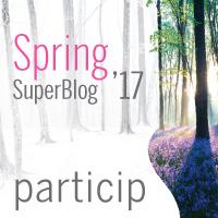 Super Blog