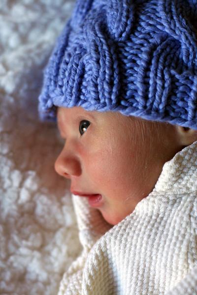 5/52: Munchkin, one week old