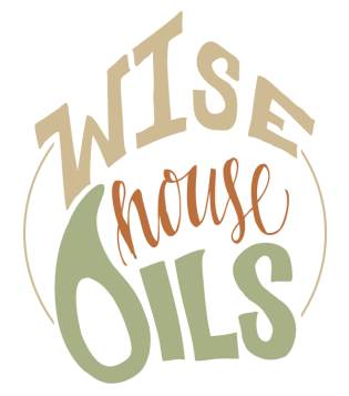 WiseHouse-logo-color-bg (2)